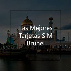 Las 9 Mejores Tarjetas SIM Prepago para Brunei en el 2021